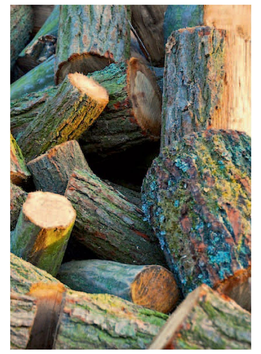 Enat energie uit de natuur - Badkamer natuur hout ...